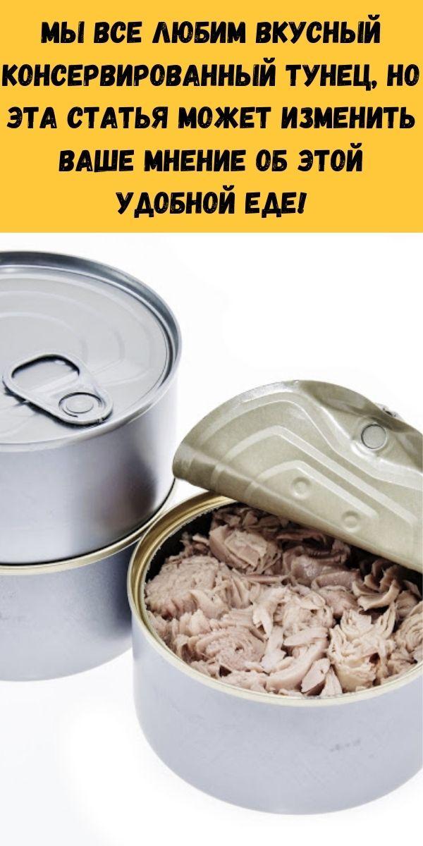 Мы все любим вкусный консервированный тунец, но эта статья может изменить ваше мнение об этой удобной еде!