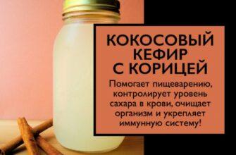 Кокосовый кефир может способствовать пищеварению, укрепить иммунитет и предотвратить рак. Вот как это сделать!