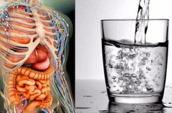 5 вещей, которые не следует делать на пустой желудок