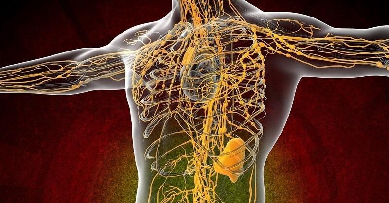 Для хорошего обмена веществ и иммунитета нужно чистить кровь. О головных болях тоже забудете!